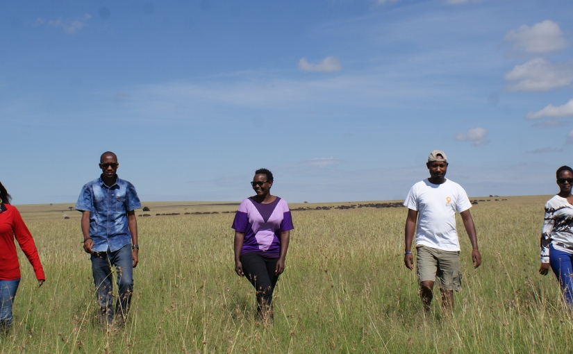 Maasai Mara: Perfect Calm Before the Wildebeest Storm